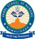 VKNRL School of Nursing